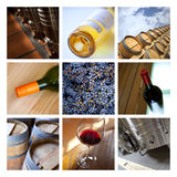 Wine collage Stock Images