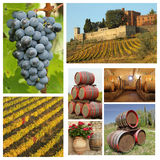 Wine collage. Wine tradition collage, region Chianti in Tuscany stock images