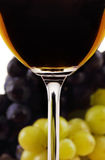 Wine collection: Closeup view of red wine glass in front of blurred grapes Royalty Free Stock Images