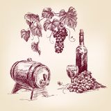 Wine collection hand drawn  vector illustration Stock Photo