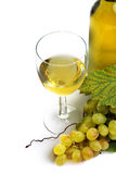 Wine collection: White grapes in front of wine glass and bottle Royalty Free Stock Image
