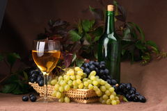 Wine composition. Wine glass with bottle for wine tasting Stock Photo