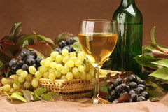 Wine composition Royalty Free Stock Photography