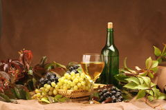 Wine composition. Wine glass with bottle for wine tasting Stock Photography