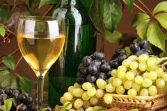 Wine composition stock images