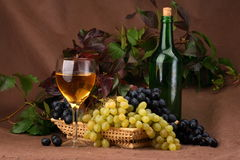 Wine composition. Wine glass with bottle for wine tasting Stock Photos