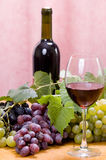 Wine composition. With bottle and glass of wine and bunch of grapes Stock Image