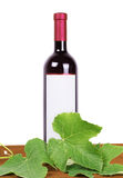 Wine composition: vine and bottle of wine Royalty Free Stock Image