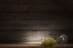 Wine concept Royalty Free Stock Images