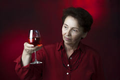 Wine Control Expert Royalty Free Stock Image