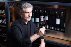 Wine cooler. Man poured red wine into a glass. A glass of red wine. Handsome man drinking wine Stock Image