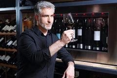 Wine cooler in restaurant. Sommelier tasting red wine in restaurant royalty free stock photos