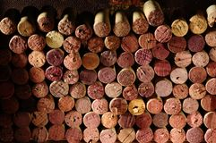 Wine cork. Stock Photos