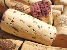 Wine cork. Close-up wine cork texture Royalty Free Stock Images