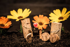Wine cork figures, Concept Couple in Love with flowers Royalty Free Stock Images