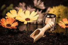 Wine cork figures, Concept landscape gardner with flowers Royalty Free Stock Images