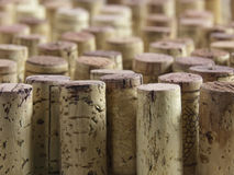 Wine cork group Royalty Free Stock Image