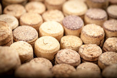 Wine corks Stock Photography