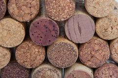 Wine corks isolated. On the white Royalty Free Stock Photography