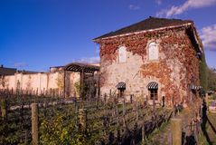 Wine country Stock Photography