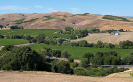 Wine country inNapa Valley Stock Photo