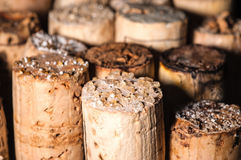 Wine Crystals On Old Corks Stock Photography