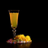 Wine from dandelions in a glass. Black background. Royalty Free Stock Photography