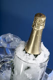 Wine dans la bouteille en verre sur la neige et la glace Photo stock