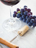 Wine degustation Royalty Free Stock Image