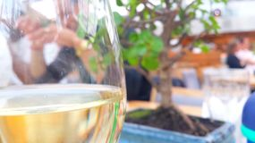 Wine. By the dinner royalty free stock photography