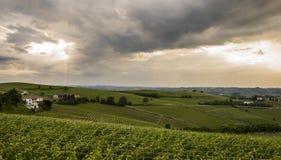 Wine District Castel Rocchero Piedmont Stock Photo