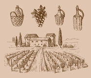 Wine doodle. Vector hand drawn wine sketch and vineyard doodle Royalty Free Stock Image