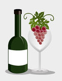 Wine drink graphic design with icons Royalty Free Stock Images