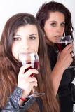 Wine drinking Royalty Free Stock Photo