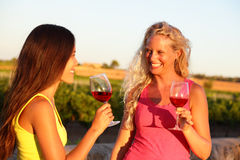 Wine drinking women friends toasting glasses. Wine drinking friends toasting drinks at vineyard. Two women cheering with a glass of rose or red wine in summer Royalty Free Stock Photo