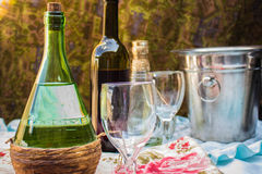 Wine and drinks Stock Photography