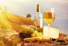 Wine, druvor och ost Royaltyfri Fotografi