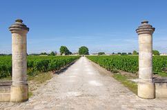 Wine estate, medoc, bordeaux, france Royalty Free Stock Photo