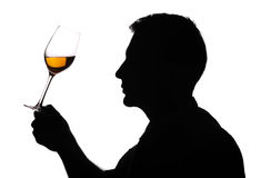 Wine expert testing wine royalty free stock photography