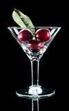 wine för leaf tre för Cherry glass Fotografering för Bildbyråer