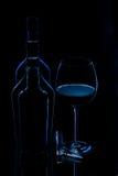 wine för silhouette för flaskexponeringsglas Arkivfoton