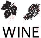 wine för vine för vektor för druvadruvaleaf Arkivfoto