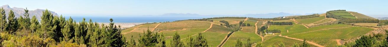 Wine farm near Sir Lowrys Pass Stock Photos