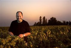 Wine Farmer. A wine farmer tending to his grapes in France Stock Photo