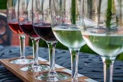 Wine flight lined up for tasting at the vineyard. Tasting an assortment of wines from a wine flight at the vineyard on a summer day royalty free stock photos