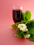 Wine and flowers. The Red Wine and flowers Stock Photography