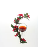 Wine and flowers. Wine glasses and red flowers Royalty Free Stock Image