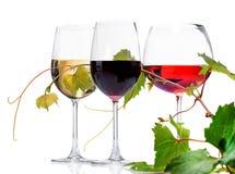 wine för exponeringsglas tre Fotografering för Bildbyråer