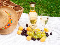 Wine, fruits and basket of picnic  on a tablecloth Royalty Free Stock Photos