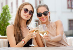 Wine fun with friends. Stock Image